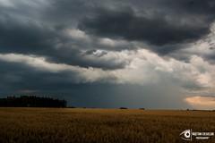 untitled-20 (Kajetan Ciesielski) Tags: light sky cloud sun storm rain shadows outdoor shelf sunrays d40 niokon nikond40 pallas135