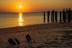 Sunset on the Bay (mhoffman1) Tags: cumberlandcounty delawarebay eastpoint heislerville nj sonyalpha a7r bay beach golden peaceful serene sunset mauriceriver newjersey unitedstates us