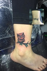 owl (ktattoo2711) Tags: art animal tattoo watercolor sketch artist vietnamese drawing sketching indoor tattoos vietnam cover owl draw saigon linework tattooist si gn dotwork watercolortattoo saigonese smalltattoo xm