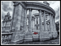 Belfast Cenotaph (D.k.o.w) Tags: wreath ceremony centotaph belfastcityhall thetwelfth loyal orangeorder cityhall thesomme northernireland ulster poppies red canon7dmkii mono selectivecolour