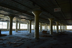 'Dixie Cup Factory' (miranda.valenti12) Tags: dixie cup factory old abandoned dark light sunlight building pillar pillars trash decaying decayed decay exit ceiling ground landscape windows window leading lines