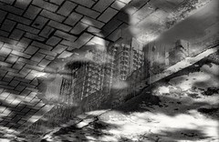 Through the Clouds... (David Davidoff) Tags: urban building reflections water treeshadow cityscene blackandwhite leicam6 leitzsummitar5cmf20collapsible ilfordfilm analogue decayed abandoned decadence blurredvision