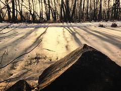 Just a little winter (grzegorz_63) Tags: trees winter light sunset ice stone fujifilm fujixs1