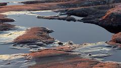 Seashore cliffs at a March sunset (Kustaanmiekka, Suomenlinna fortress, Helsinki, 20150315) (RainoL) Tags: sunset reflection ice finland geotagged march helsinki bluehour helsingfors fin seashore suomenlinna sveaborg uusimaa 2015 nyland kustaanmiekka gustavssvrd fz200 201503 geo:lat=6018420328 geo:lon=2488139392 20150315
