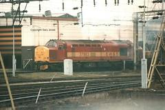 37883 Bescot (onthebeast) Tags: west class 37 railways midlands ews bescot 37883