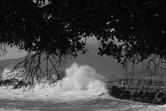 Stormswell (MN_2) Tags: bw beach monochrome waves harbour capetown bikinibeach