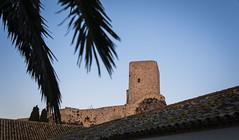 Olvera, Cdiz, Espaa (Alexwing) Tags: landscape town rustic cdiz ville overa