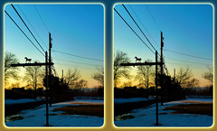 Horse Light Post 1 - Parallel 3D (DarkOnus) Tags: winter sunset horse lumix stereogram 3d dusk telephone scenic pole stereo penn tuesday parallel telegraph lightpole stereography buckscounty dmcfz35 telegraphtuesday