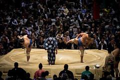 Sumo in Osaka-24 (Rodrigo Ramirez Photography) Tags: japan amazing traditional professional tournament osaka sumo yokozuna ozeki makuuchi hakuho sumotori sumotournament maegashira reikishi harumafuji topdivision