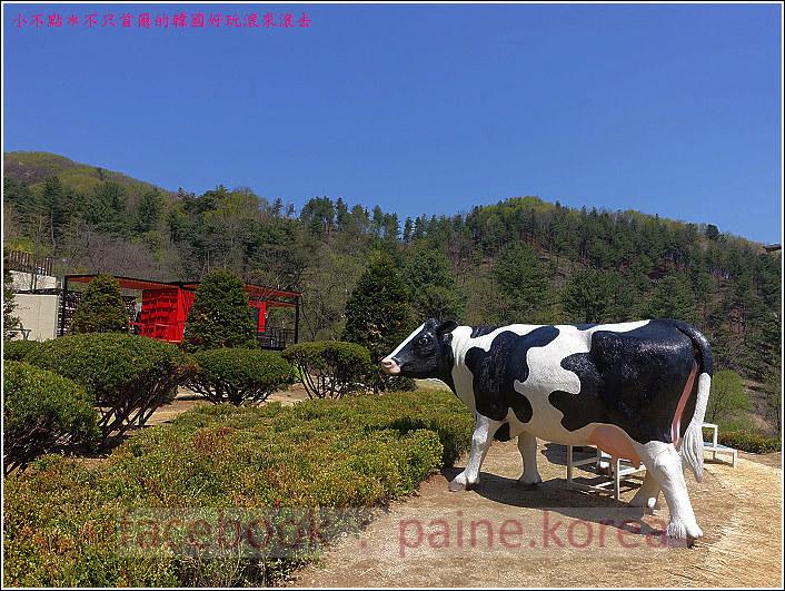 京畿道小瑞士村 (117).JPG