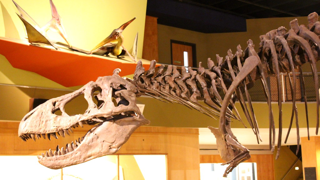 The world 39 s most recently posted photos of Dinosaur museum ohio