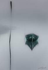 The Messenger... (paulosilva3) Tags: world mist canon de landscape eos boat stripe lee l filters grad f4 ria mistyc aveiro waterscape 6d lakescape riverscape 24105mm