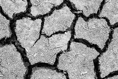 Abstract Set Five - 6 (burntpixel.ca) Tags: white canada abstract black art monochrome beautiful horizontal rural canon spectacular grey photo winnipeg pattern mud fine gray patrick manitoba soil photograph cracks 6d mcneill burntpixel canon6d wrench777
