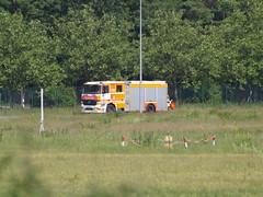 HTLF der Wache 3 Runway 18West (uwe_gompf_66) Tags: flughafen arff airport frankfurtmain fraport feuerwehr firerescue ziegler htlf