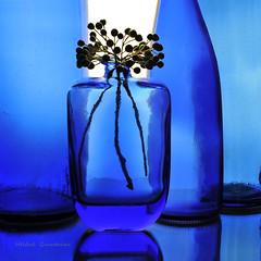 Transparence bleue et baies d'aronia (Hélène Quintaine) Tags: bleu klein bouteille grappe fruit transparence reflet création composition naturemorte boule bleuklein monochrome abigfave aronia sorbiernoir