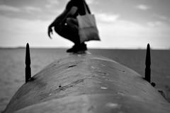 (laureltopias) Tags: sea summer history suomi finland gun