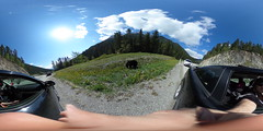 This Is Me in VR recorded a Canada BlackBear (ThisIsMeInVR.com) Tags: samsung 360 virtual reality ricoh vr oculus spherical 360vr