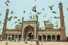Jama Masjid, Delhi (arch emran) Tags: jama masjid delhi