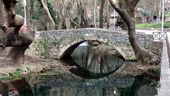 Bridge-2 (afilitos) Tags: central greece livadeia herkyna river          stone bridge