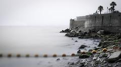 Coast (gibwheels) Tags: trees sea water bay coast nikon rocks long exposure waves 10 stop filter shore lee nd british gibraltar silky d500