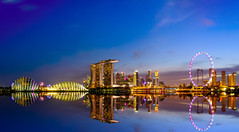 Singapore Skyline and view of skyscrapers on Marina Bay from Garden by the Bay East at twilight time. (Nuttawut Uttamaharad) Tags: city travel bridge light sunset sky urban panorama reflection building tree tower wheel silhouette skyline architecture modern night marina river landscape hotel evening bay singapore asia downtown cityscape exterior view skyscrapers dusk famous center east business commercial financial merlion finance