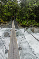 Routeburn River Suspension Bridge (robertdownie) Tags: river trail bridge track alps tramping cable south island southern hiking rapids trekking flood suspension routeburn new zealand nz national parks lake wakatipu fiordland te anau mount aspiring