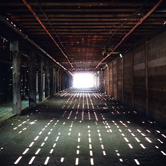 the light at the end of the tunnel. santa monica, ca. 2016. (eyetwist) Tags: eyetwistkevinballuff eyetwist santamonica pier tunnel vanishingpoint pointsoflight sunlight mamiya 6mf 75mm kodak portra 400 mamiya6mf mamiya75mmf35 kodakportra400 ishootfilm ishootkodak analog analogue film emulsion square 6x6 mediumformat 120 filmexif iconla recentlyprocessedfilm epsonv750 lenstagger losangeles la angeleno california santa monica pacificocean west coast socal los angeles beach vanishing point symmetry under underthepier santamonicapier wharf planks light points summer amusement park lightattheendofthetunnel bikepath pipes timber wood architecture structure