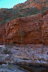 MacDonnell Ranges Ormiston Gorge Northern Territory-7