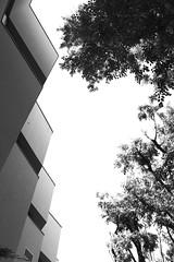 Armani / Silos, by Tadao Ando (Maria_MR) Tags: milan italy architecture detail blackandwhite oma urban milano italia sculpture art