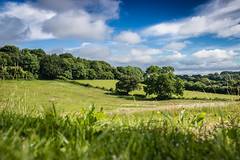 Field in the South Downs (jason_wakeford) Tags: summer landscape field green blue skies england hampshire south downs national park