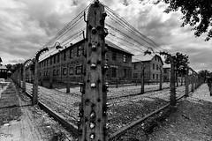 Corriente continua (Perurena) Tags: valla alambrada electricidad prision campodeconcentracin postes vigilancia tortura genocidio exterminio nazis auswitch polonia