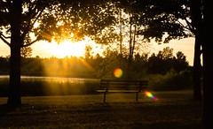 Stouffville Park Sunrise (mdentremont) Tags: pond morning lensflare sunrise bench trees trail outdoors park beam nature rays silhouette whitchurchstouffville ontario canada ca