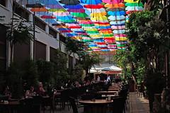 Kuzey Kbrs Trk Cumhuriyeti ( KKTC) (talipcetin) Tags: kktc kuzey kbrs trk cumhuriyeti turkish republic northern cyprus trnc lefkoa bedesten lokanta cafe restaurant emsiye masa sandalye mekan yemek bazaar food dine imek drink umbrella sun visor gnelik