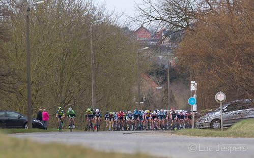 Molenbeek - Wersbeek_-13