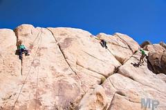 AmyRose & Friends (MacysPhotography) Tags: california ca camping tree rock forest joshua joshuatree climbing national rockclimbing jtree joshuatreenationalforest rei1440project reiyayday reipv56 reilove liveclimbrepeat