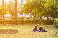 Pareja al sol (RJCordero) Tags: park parque green love sunrise sevilla couple day pareja maria seville lovers luisa boygirl