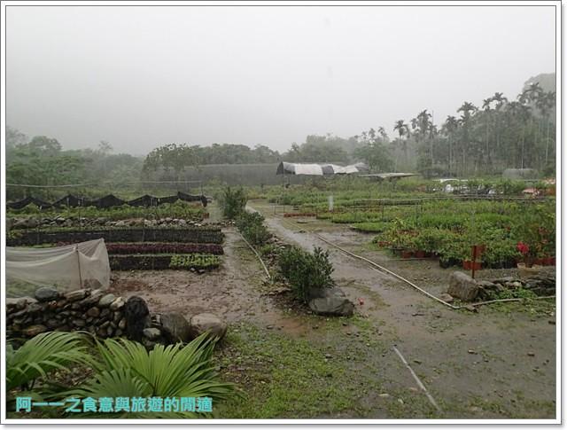 花蓮鯉魚潭螢火蟲賞蝴蝶青陽農場攝影花蓮旅遊image004