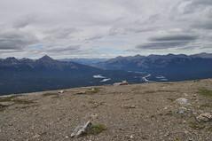 CANADA - PARQUE NACIONAL DE JASPER - MONTE WHISTLER (10) (Armando Caldern) Tags: whistler patrimoniocultural montaasrocosas parquenacionaldejasper parquenacionaldecanada