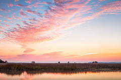 Taking Flight (Charles Opper) Tags: morning winter light sky color reflection nature water clouds sunrise canon watercolor georgia landscape dawn cool warm flight marsh canon2470mm canon7d barbourriverlanding