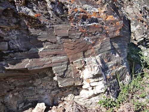 Radiolarite du Cesana Torinese (Alpes italiennes)