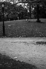 XE1-08-21-14-428 (a.cadore) Tags: nyc newyorkcity blackandwhite bw zeiss centralpark candid fujifilm carlzeiss xe1 zeissbiogon35mmf2 biogont235 fujifilmxe1