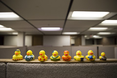 Moving Out (Phil Roeder) Tags: abandoned yellow office ducks iowa rubberducks desmoines canon2470 desmoinespublicschools