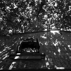 A sunny day in Shanghai (quizasleaf) Tags: china windows light bw window square blackwhite poetry poem shanghai buddhist chinese balance lightshadow visualart sunnyday architectual okaybuilding