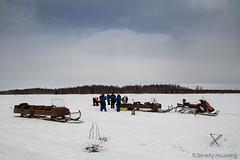 33-IceFishing11 copy (Beverly Houwing) Tags: fish suomi finland frozen lapland kukkola icefishing kukkolankoski tornioriver