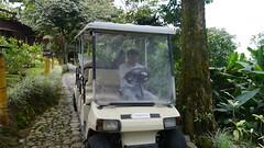 chu chu train (Mayan_princess) Tags: chiapas argovia finca resort caf coffee kaffee paraso paradise vegetacin vegetation verde green ro river spa relajacin relax forest selva orgnico autosostenible