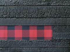 charred (Jef Poskanzer) Tags: wood sign t geotagged plaid burned charred lazybear geo:lon=12241953 geo:lat=3776030
