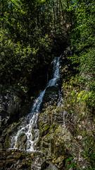 Gorge Creek and Falls-002 (RandomConnections) Tags: cascades northerncascades skagitcounty skagitriver washington rockport unitedstates us