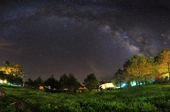 Milky way,Fushoushan Farm  (Vincent_Ting) Tags:            maple maples     taiwan formosa autumn  nikon nature water sky   cosmos vincentting  blussky clouds  galaxy milkyway startrails