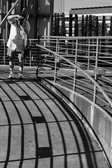 FujiGuy (PJ Resnick) Tags: pjresnick perryjresnick pjresnickgmailcom pjresnick fujinonxf35mmf14r 35mm xf35mmf14 fujinon xf light fuji fujifilm noir digital shadow texture shadows wa washington angle perspective resnick simple gray grey blackandwhite monochrome monochromatic rectangle rectangular bw mono black white structures outdoor xpro2 fujifilxpro2 seattlecenter animalia acros acrosg curves man fujiguy camera fujilove 2016fujiloveglobalphotowalk fujiloveglobalphotowalk 3whitewall whitewall