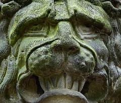 Rosinenstuten (niedersachsenfoto) Tags: lwe montagsgesicht mondayface aurich ostfriesland niedersachsenfoto